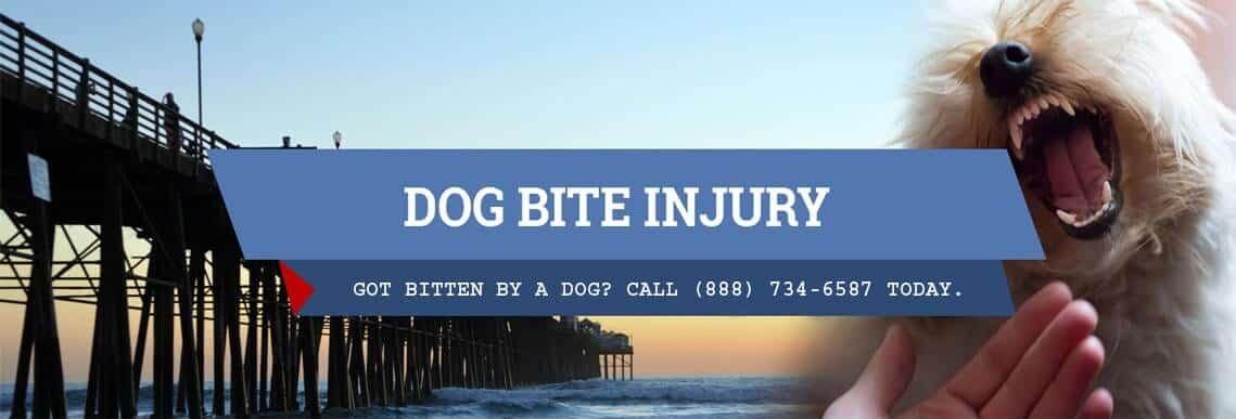 Dog Bite New Injury